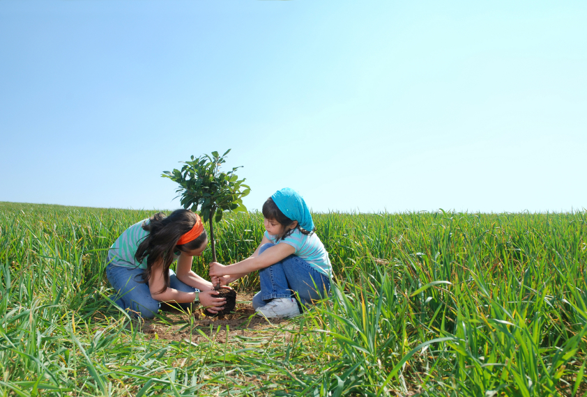 girls-planting-tree